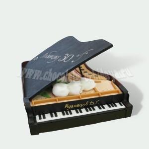 Чёрный рояль
